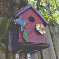 Aiutare gli uccelli a proteggersi dal freddo