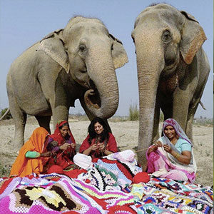 maglioni elefanti thum