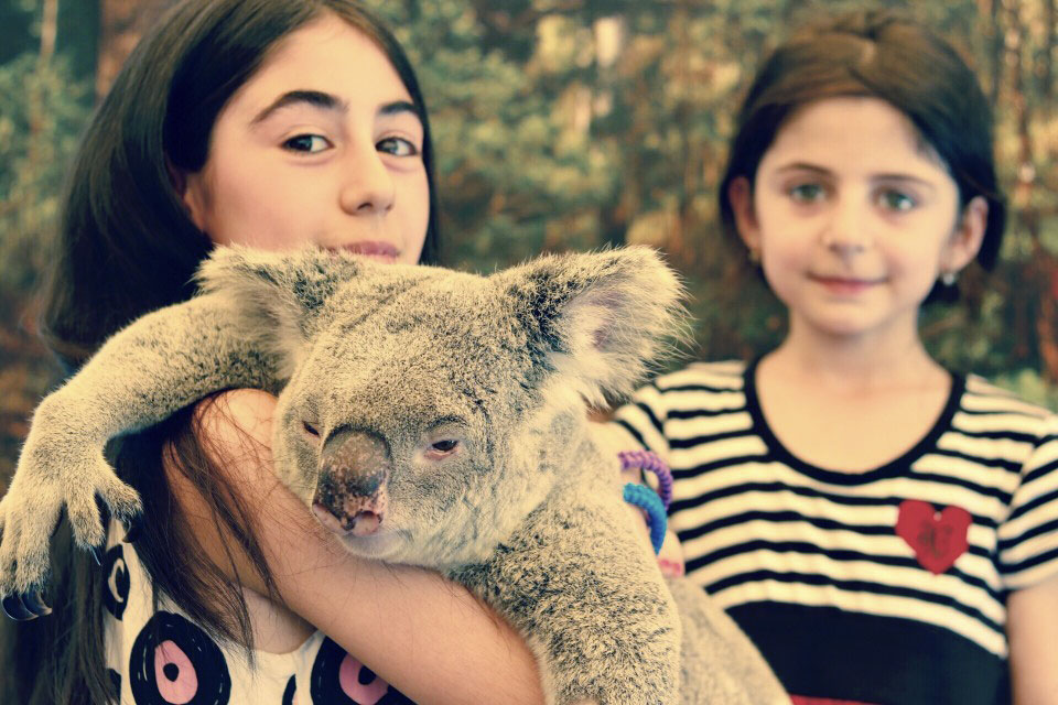 bambine con koala