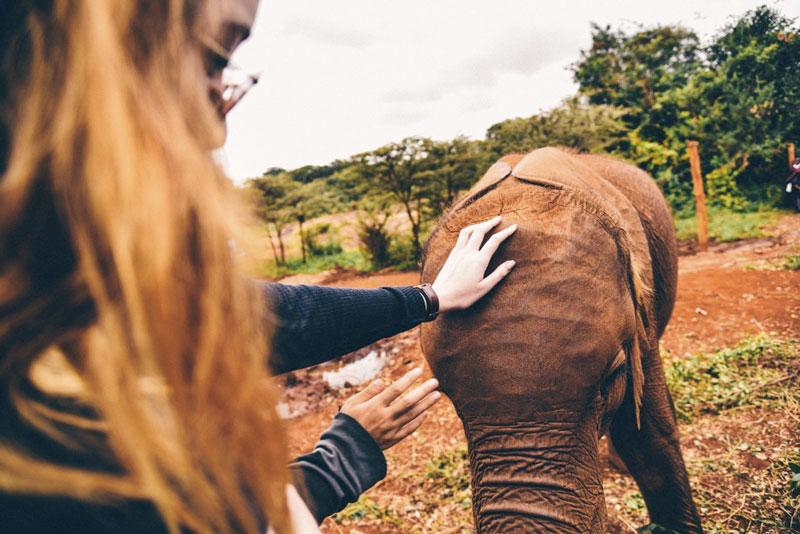 ragazza con elefante